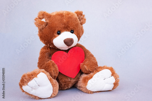 Teddy Bear with red heart. Valentines Day gift. #313948811