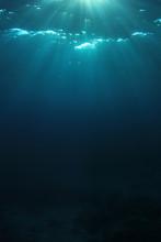 Sunlight In Ocean