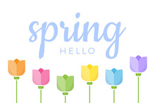Hello Spring Hand Lettered Quote With Set Of Six Different Color Tulip Flowers. Vector Illustration