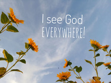 Inspirational Quote - I See God Everywhere. With Beautiful Frame Of Sunflowers Background On White Clouds And Bright Blue Sky In Low Angle View.