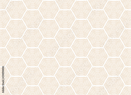 Japanese traditional Hexagon geometric pattern vector background