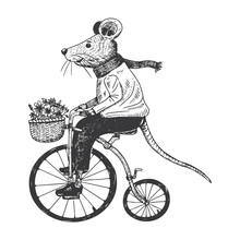 Illustration Of Mouse On Penny...