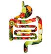 canvas print picture - Verdauungstrakt aus Obst und Gemüse