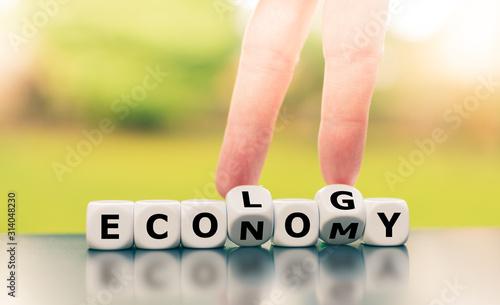Fototapeta Economy versus ecology. Finger turn  dice and changes the word economy to ecology. obraz
