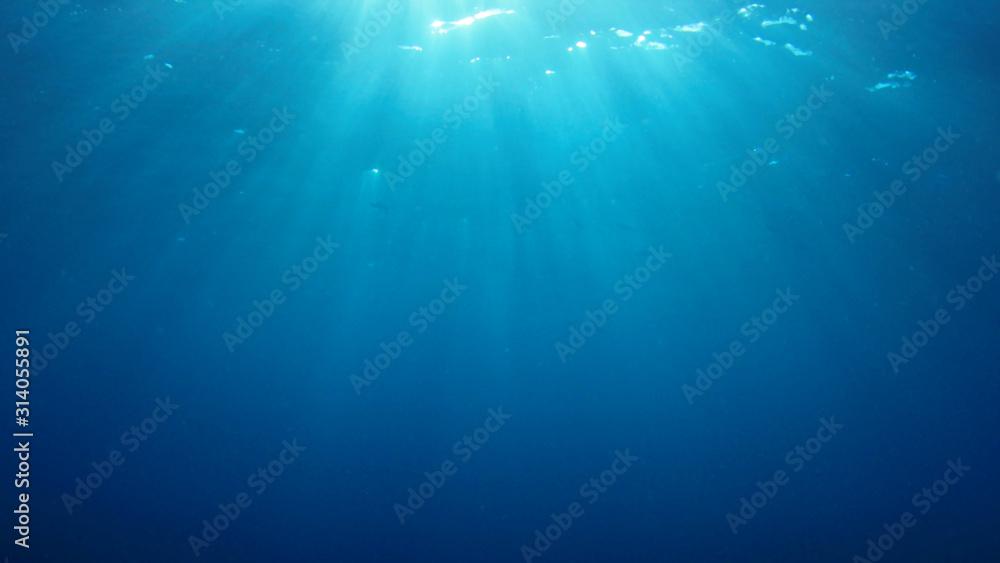 Fototapeta Underwater blue background in ocean with sunbeams
