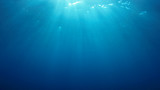 Underwater blue background in ocean with sunbeams