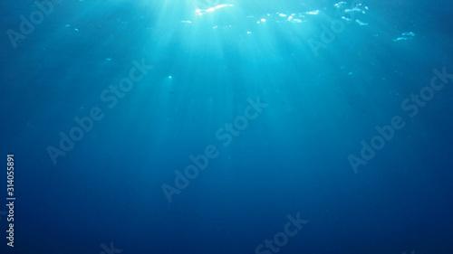 Fototapeta Underwater blue background in ocean with sunbeams obraz