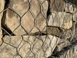 Kamień w koszu