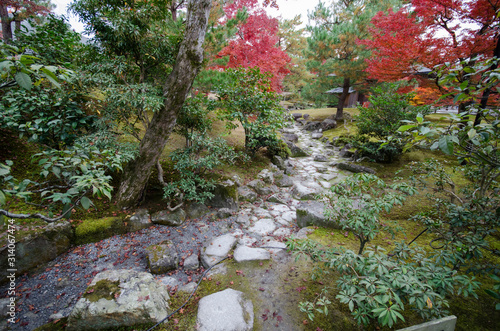 Photographie Autumn garden tree in Golden Pavilion Kinkakuji Temple at Kyoto