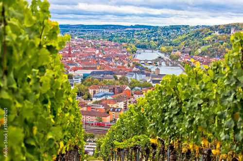 Obraz Old town of Wurzburg view from the vineyard hill - fototapety do salonu