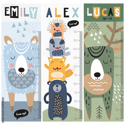 Fotografía Kids height chart with forest animals in doodle cartoon style