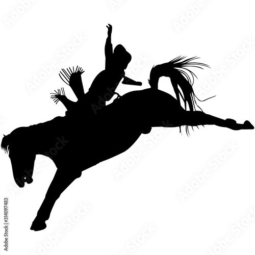 Isolated Bare Back Bronc Silhouette Vector Canvas Print