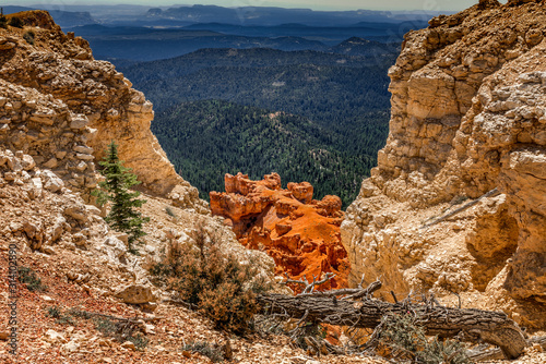 Green, red, white. Different colors and natural patterns of the Bryce Canyon, Utah