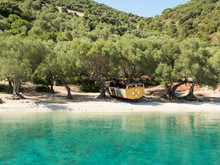 Beautiful Beach With Olive Tre...