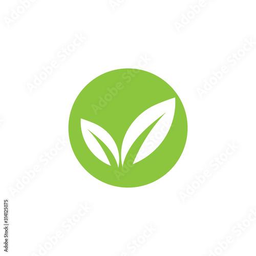 Green leaf ecology nature element vector Wallpaper Mural