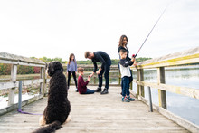 Dog Watching Family Fish On A Dock