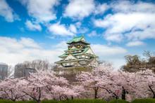 Osaka Castle With Japanese Che...