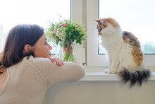 Mature Woman And Domestic Tricolor Cat Sitting On The Window