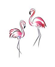 Flamingo Two, Black Lines Cont...