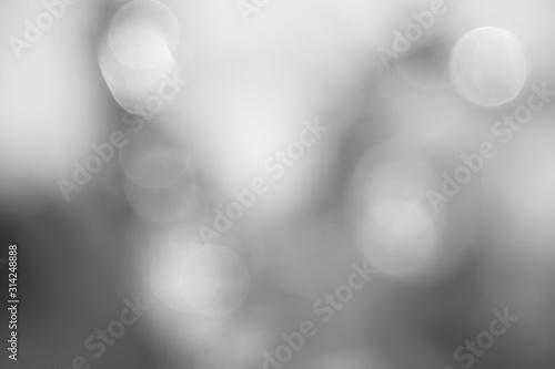 Obraz Neutral gray bokeh soft focus. - fototapety do salonu
