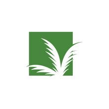 Palm Logo Template Design Vect...
