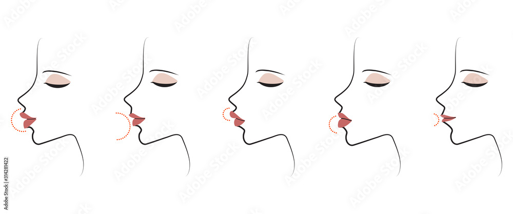 Fototapeta Profile woman lip forms. Lips shape. Vector illustration. Isolated on a white background