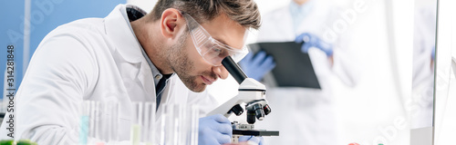 Fotografie, Tablou panoramic shot of molecular nutritionist using microscope in lab