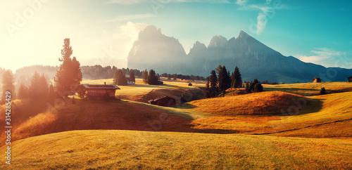 Photo  Stunning morning Scene
