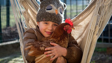 Authentic Shot Of Happy Little Smiling Girl Is Playing With Hen Outside The Countryside House In A Sunny Autumn Day.