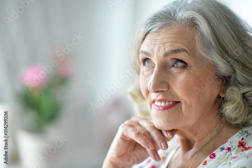 Close up portrait of happy senior woman at home Tableau sur Toile