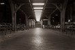 Stairs to the platform of a subway station in Berlin, entrance to the subway station Görlitzer Strasse in Berlin Kreuzberg, night shot, Berlin, Germany, black and white photo, sepia photo