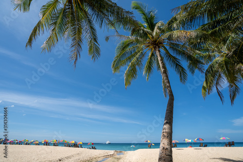holiday on white sand beach with blue sky, colourful beach umbrella and coconut tree
