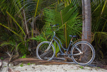 Old Abandoned And Rusty Bike L...