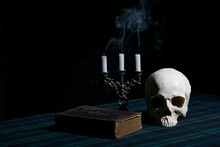 Vanitas Picture With A Skull, ...