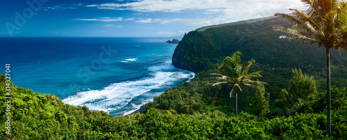 Cuadros en Lienzo Panorama of the northern coast of the Big Island with steep green cliffs and blu