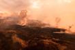 Leinwanddruck Bild - Bush fire, Burned black land on hill in Australia