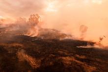 Bush Fire, Burned Black Land O...