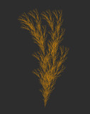 Vector Weed Generative Design - Plant Like L-system Mathematical Model - 314345016