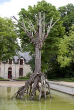 Chaumont Castle Historical Property Horses Farm