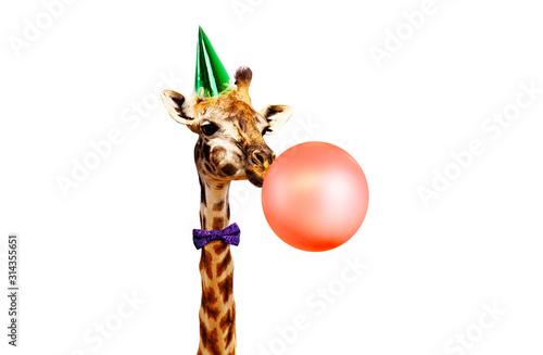 Giraffe blow air balloon birthday party white bg Wallpaper Mural