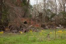 Louisiana Mill Ruins Overrun W...