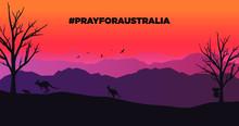 Australia Fire. Kangaroos, Koa...