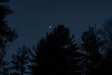 Moon In The Sky Behind Tree