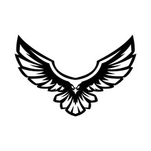 Majestic Flying Eagle Ready To Attack Its Prey Vector Illustration Design