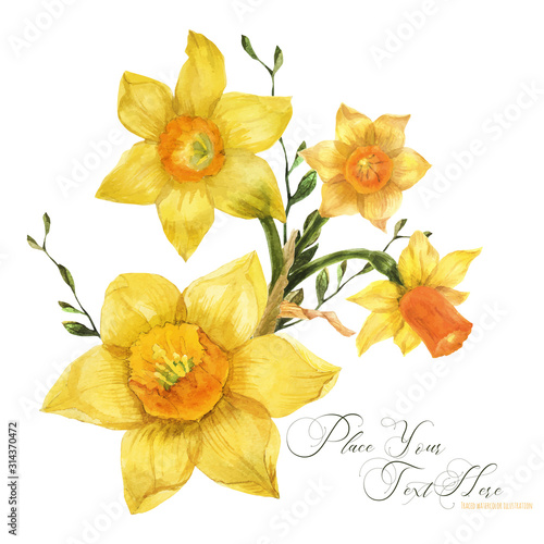 Yellow spring floral bouquet with daffodil flowers, traced watercolor Tableau sur Toile