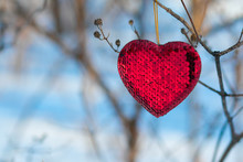 Red Heart On  Tree Branch In W...