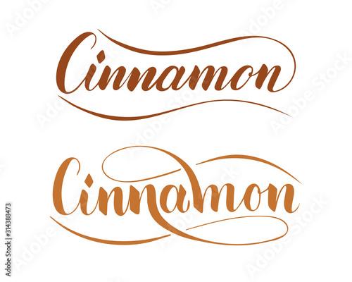 Carta da parati Vector hand written cinnamon text isolated on white background