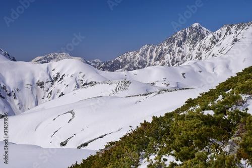 Cuadros en Lienzo Mt. Tsurugidake in Tateyama alpine, Japan