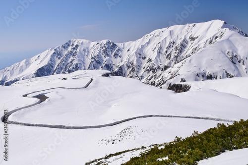Cuadros en Lienzo Spring scenery in Tateyama alpine route, Japan