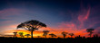 canvas print picture Panorama silhouette tree in africa with sunset.Tree silhouetted against a setting sun.Dark tree on open field dramatic sunrise.Typical african sunset with acacia trees in Masai Mara, Kenya